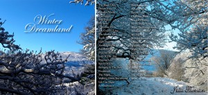 winter_dreamland